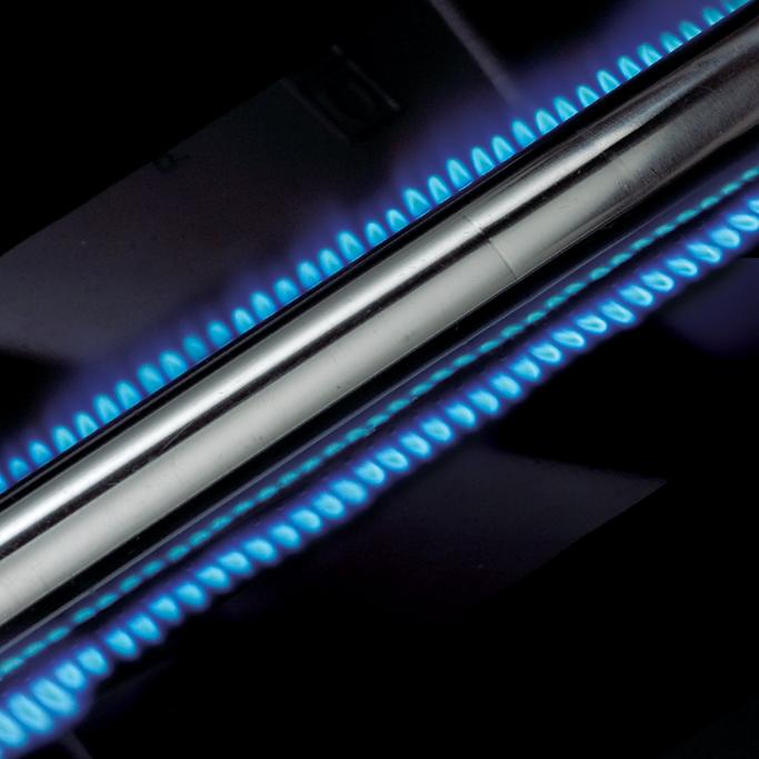 Grill gazowy • Royal 320